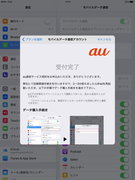 02-09-2016_Apple SIM_007